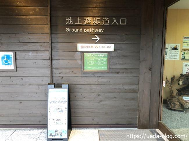 知床五胡フィールドハウス 地上遊歩道