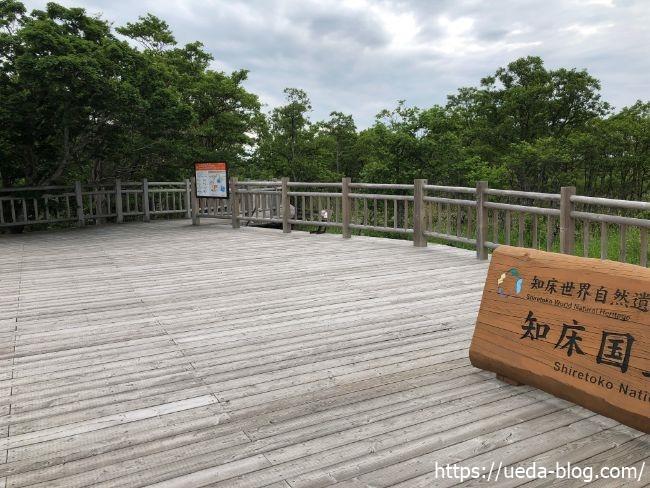 知床五胡 高架木道 入口
