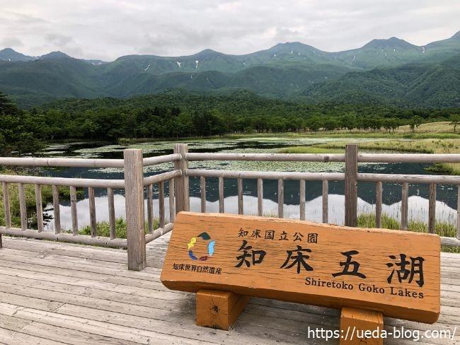 知床五胡 湖畔展望台 眺め