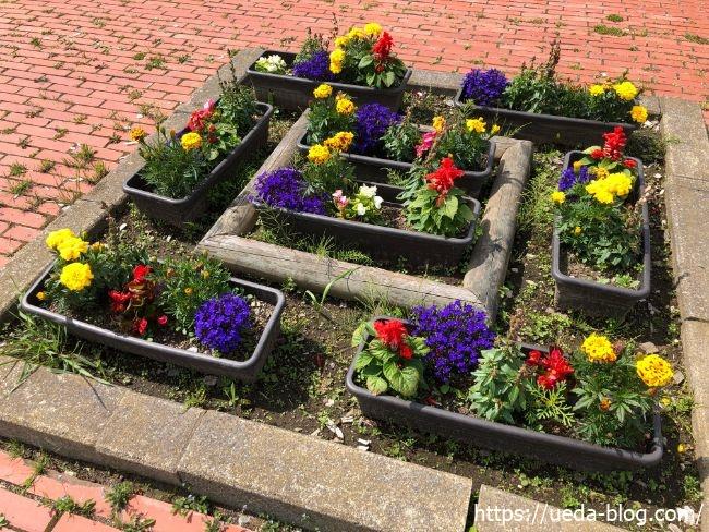 明治公園 花壇