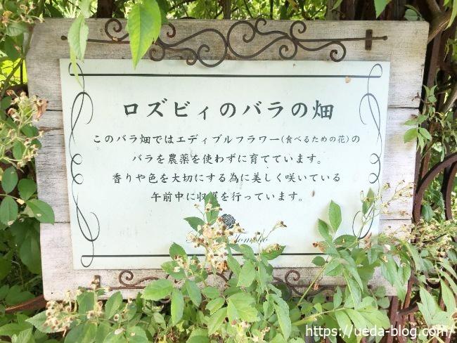 ロズビィのバラの畑とは