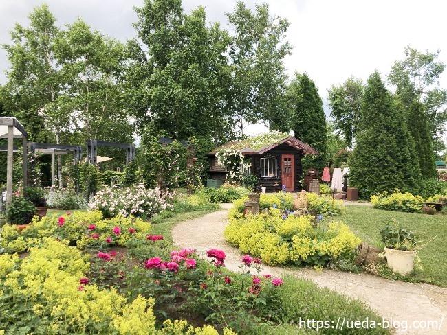 銀河庭園 ロズビィのバラの畑