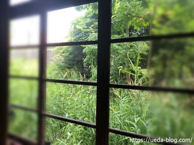 昭和の茶屋 葦笛洞 外の景色