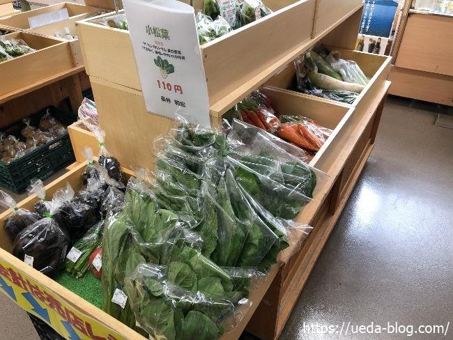 苫小牧道の駅 野菜売り場