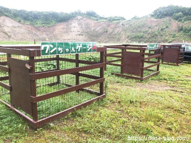 ウエムラ牧場 犬 ペット