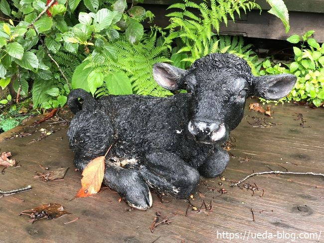ウエムラ牧場 牛のオブジェ