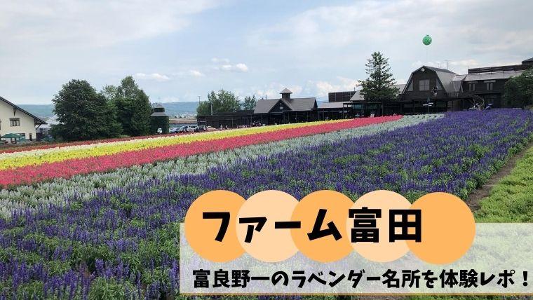 ファーム富田 ラベンダー畑