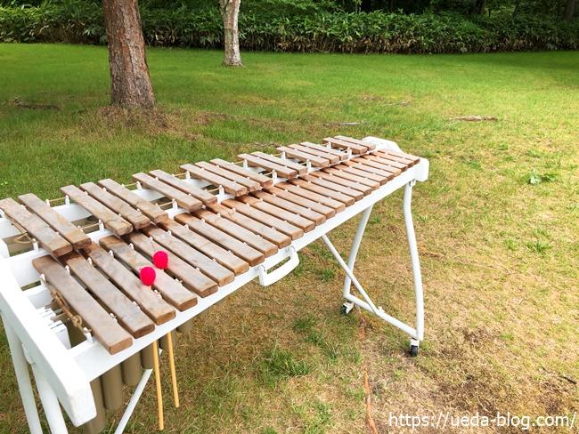 芝生広場 木琴