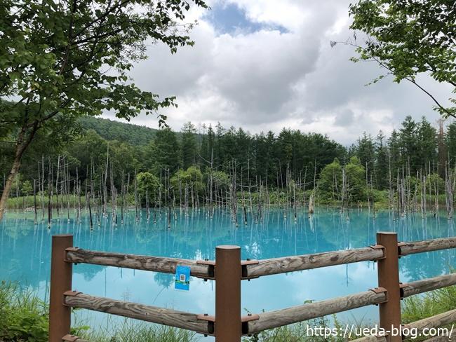 青い池の絶景写真スポット
