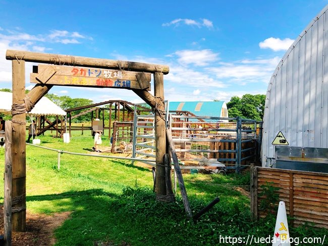 むらかみ牧場 タカトシ牧場ふれあい動物広場