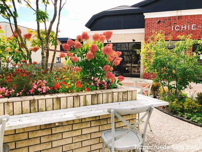 中庭のレンガ造りの花壇がかわいい